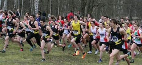 LES CROSS-COUNTRY