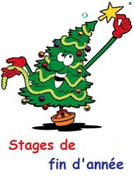 STAGES de FIN d'ANNEE